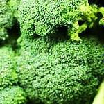 buy broccoli oil