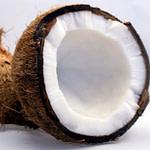 coconut-1125 (2)