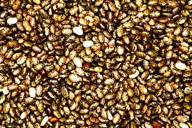 chia seed oil organic