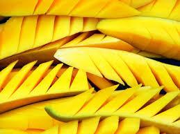 organic mango seed oil