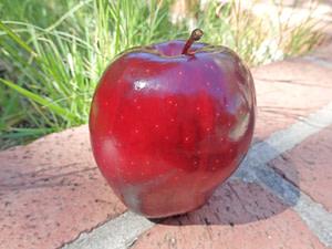 apple oil lifts depression