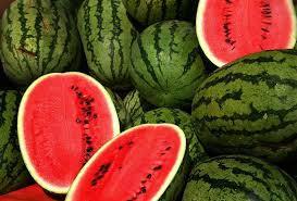 buy watermelon oil