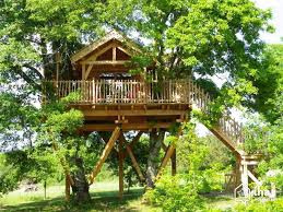 treehouse massage